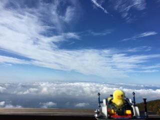 ヒヨコちゃん、雲の上へ